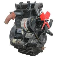 Двигун дизельний TY-295