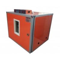 Професійний інкубатор MS-126/504